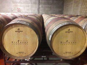 Vínne sudy v Bodega Pirineos, Španielsko