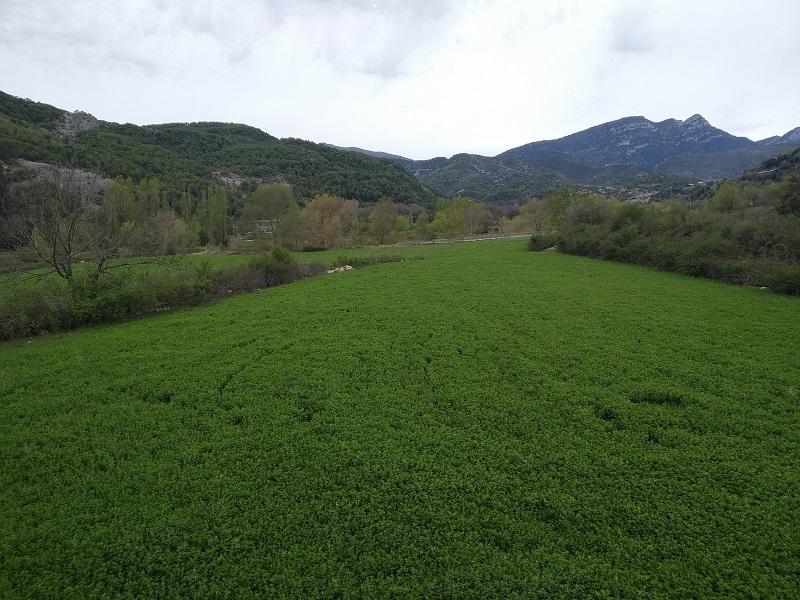 Vyhlad z okna Escalona Vylet v Pyrenejach