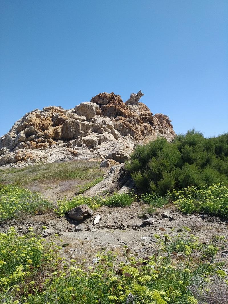 orol v skalach v prirodnom parku cap de Creus